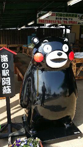 熊本満喫!